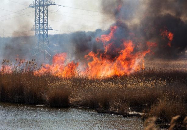 Durch verheerende Waldbrände in Kalifornien droht Millionen von Menschen das Blackout
